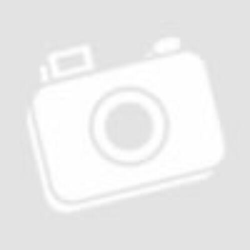 Bosch PBH 2100 RE fúrókalapács kofferben 06033A9320